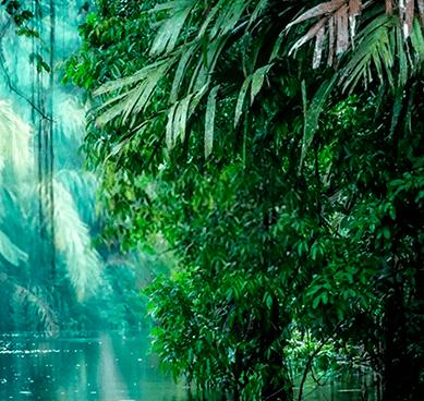 Clima Costa Rica