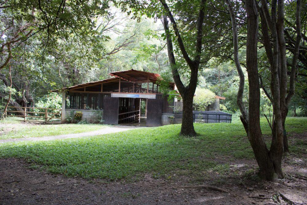 Centro de Conservación Santa Ana, Costa Rica