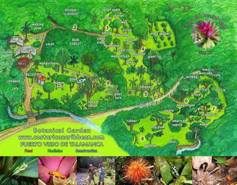 Informacion general sobre Finca La Isla Permaculture Farm, Plant Nursery and Botanical Garden, Costa Rica.