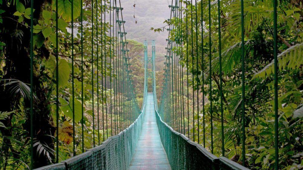 Qué hacer en Monteverde, Costa Rica