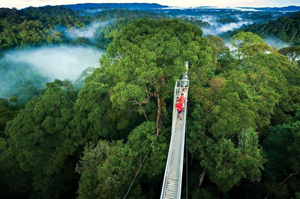 Qué ver y visitar en Monteverde
