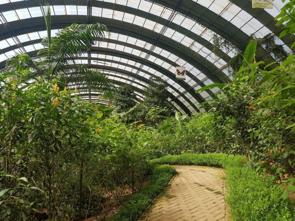 Monteverde Butterfly Gardens