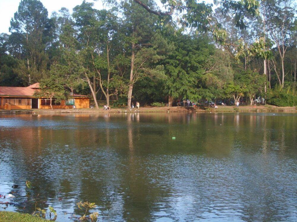 Parque Metropolitano La Sabana padre Chapuí