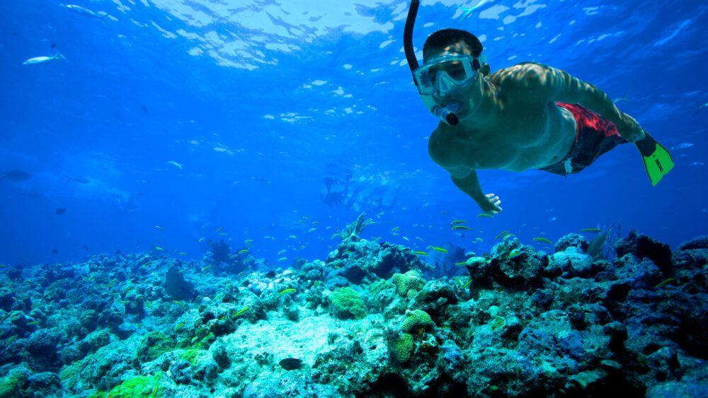 Snorkel Adventure Costa Rica