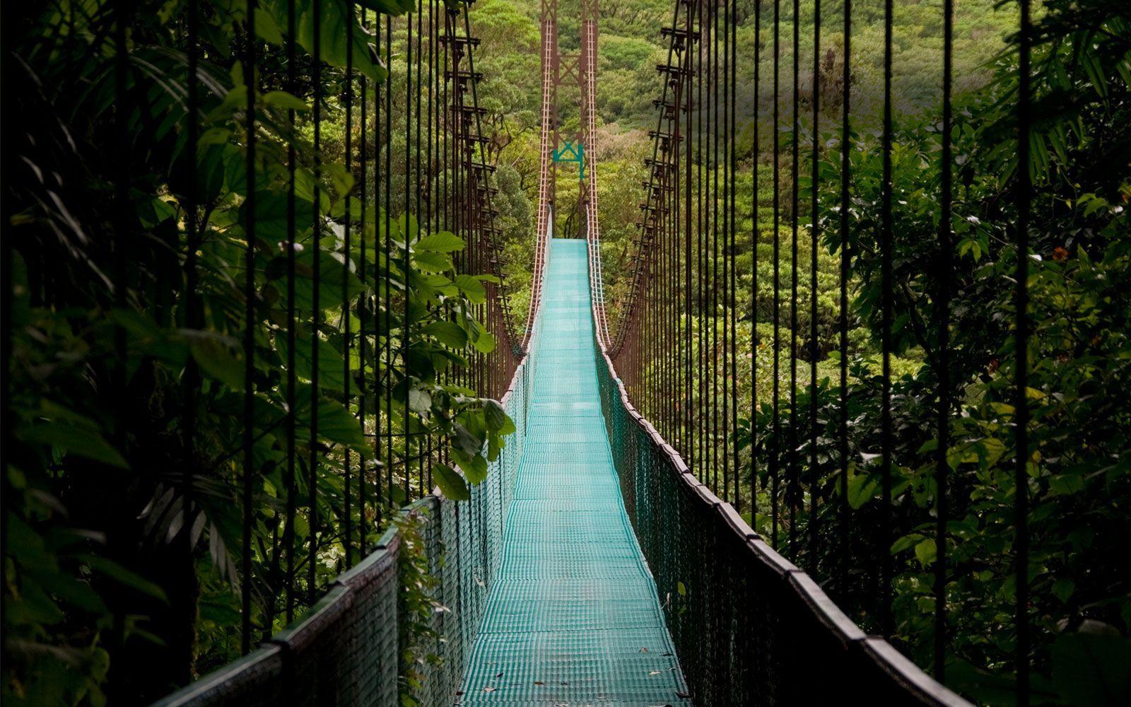 Puente Colgante del Arenal