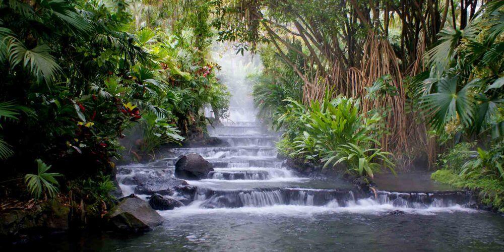 Termales del Bosque-Hot Springs