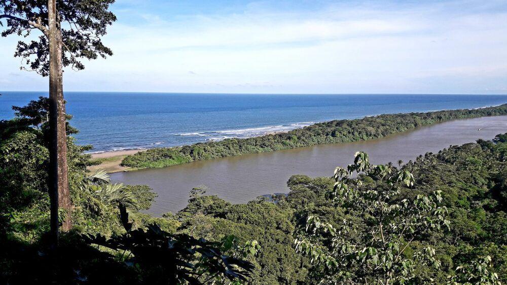 Sendero Cerro Tortuguero